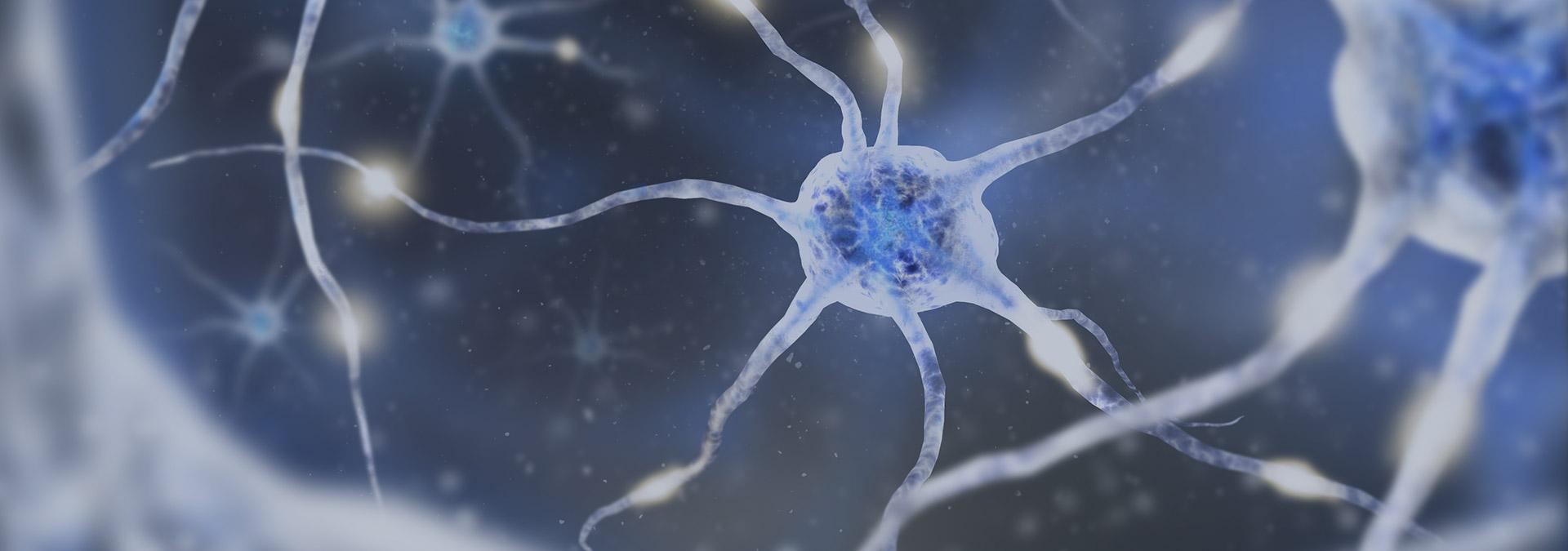 Les 12emes rencontres neurologiques du saumurois